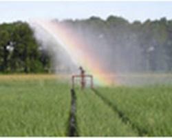 Agri Distribution - MALLEMORT - Les céréales